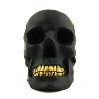 Craniu Bol Gangsta