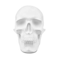 Craniu Mare Blank