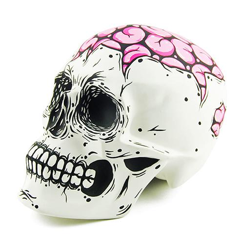 Craniu Brain