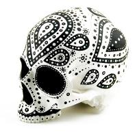 Craniu Dotted