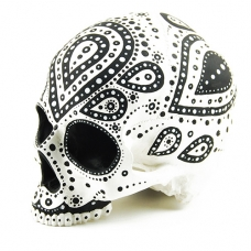 DOTTED SKULL